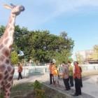 Taman Kota Klaten Arena Bersantai Keluarga