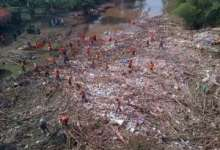 Wow Ada 'Pulau' Sampah Pasca Banjir Surut di Jakarta