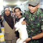 Pemkab Pati Kembangkan Peternakan Kelinci Masyarakat