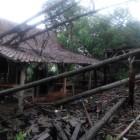 Angin Ribut, Pohon Tumbang Terjadi di Mlese dan Karangdowo