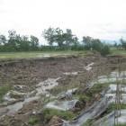 Sekitar 3 Hektar Tanah Pertanian di Senden Longsor
