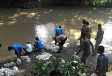 Jaga Ekosistem Sungai Pemkab Klaten Tebar Benih Ikan